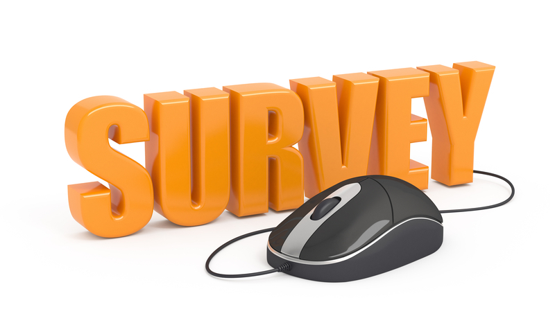 survey word with computer mouse